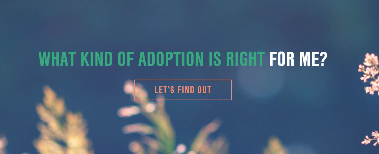 Adoption Facts With Gladney Center for Adoption