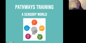 Day One Pathways_ A Sensory World